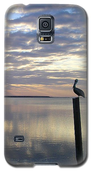 Pelican At Sunset Galaxy S5 Case