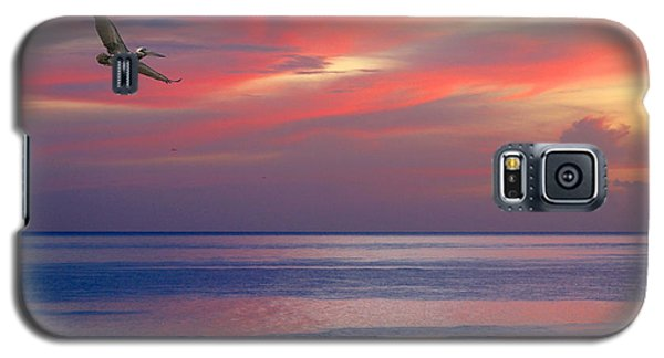 Pelican At Sunset Galaxy S5 Case by Mariarosa Rockefeller