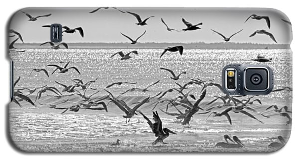 Pelican Chaos Galaxy S5 Case