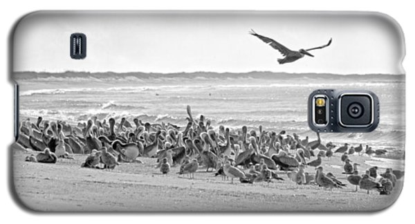 Pelican Convention  Galaxy S5 Case by Betsy Knapp
