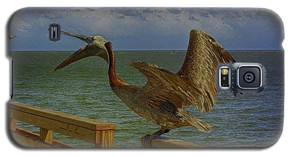 Pelican Eating Galaxy S5 Case