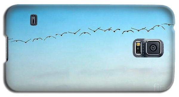 Pelican Flight Line Galaxy S5 Case by Peggy Hughes