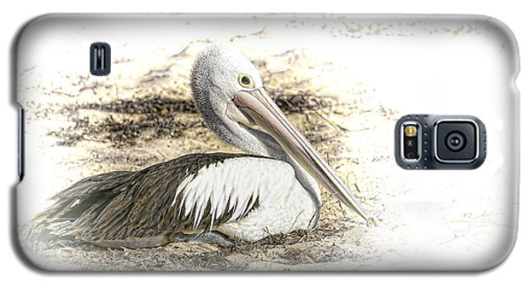 Galaxy S5 Case featuring the photograph Pelican by Holly Kempe