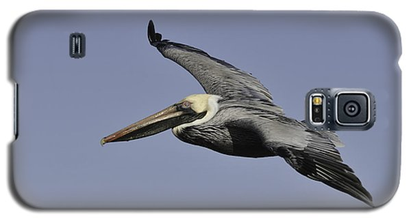 Galaxy S5 Case featuring the photograph Pelican In Flight by Bradford Martin