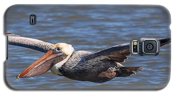 Galaxy S5 Case featuring the photograph Pelican In Flight by Patricia Schaefer