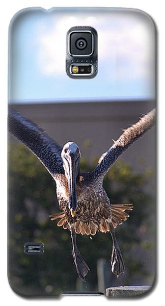 Pelican In Flight Galaxy S5 Case