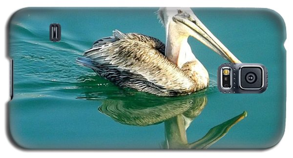 Galaxy S5 Case featuring the photograph Pelican In San Francisco Bay by Clare Bevan