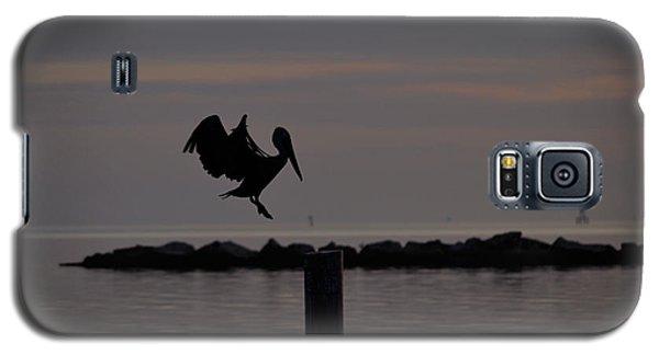 Pelican Landing Galaxy S5 Case by Leticia Latocki