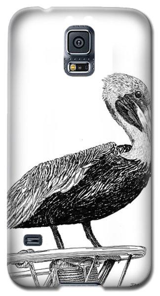 Pelican Of Monterey Galaxy S5 Case by Jack Pumphrey
