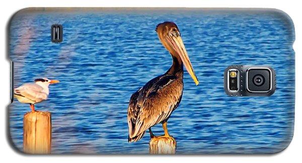Pelican On A Pole Galaxy S5 Case