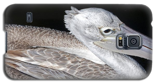 Pelican On Black Galaxy S5 Case