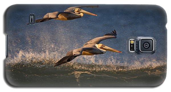 Pelican Pair  73a2315 Galaxy S5 Case