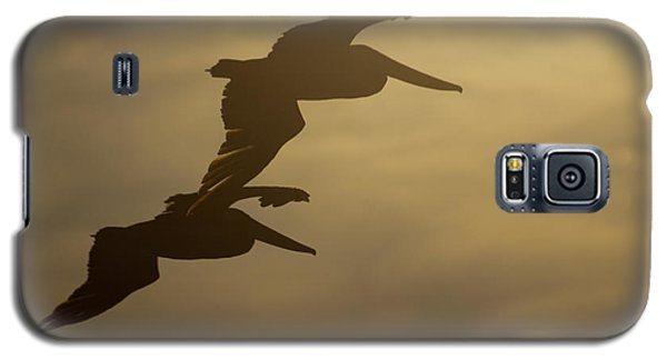 Galaxy S5 Case featuring the photograph Pelican Pair by Erin Kohlenberg