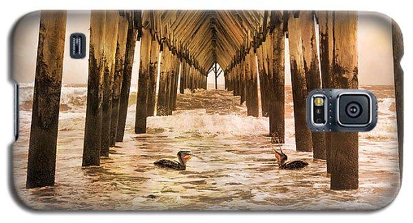 Pelican Paradise Galaxy S5 Case by Betsy Knapp