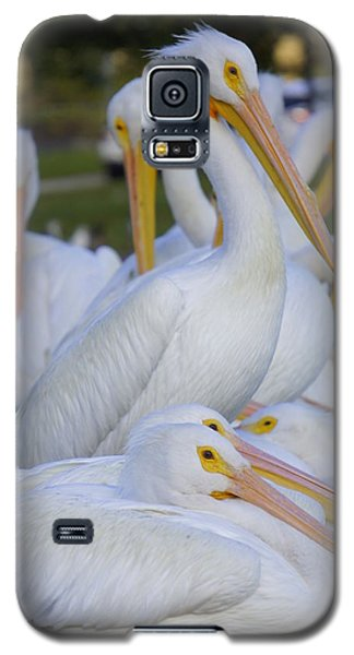 Pelican Pile Galaxy S5 Case