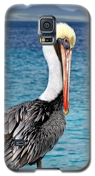 Pelican Portrait Galaxy S5 Case