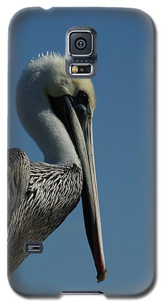 Pelican Profile 2 Galaxy S5 Case by Ernie Echols