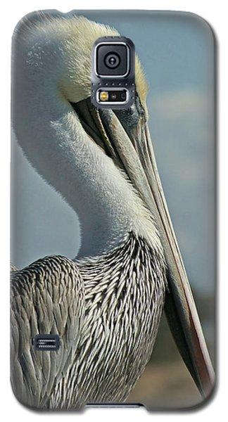 Pelican Profile 3 Galaxy S5 Case by Ernie Echols