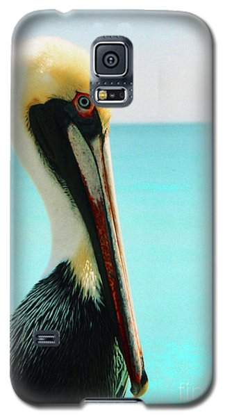 Pelican Profile And Water Galaxy S5 Case by Heather Kirk