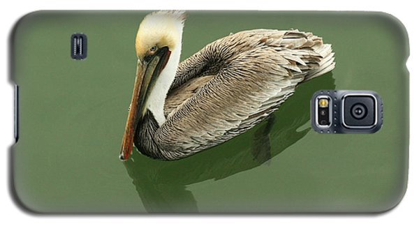 Pelican Reflection Galaxy S5 Case