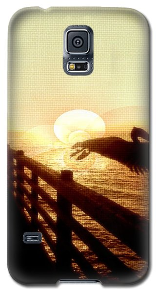 Galaxy S5 Case featuring the photograph Pelican Sun by Amanda Eberly-Kudamik