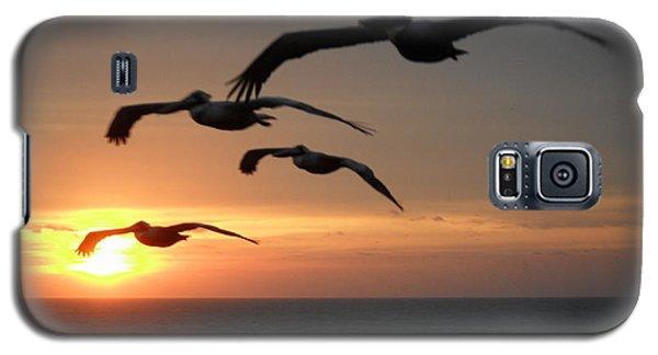 Pelican Sun Up Galaxy S5 Case