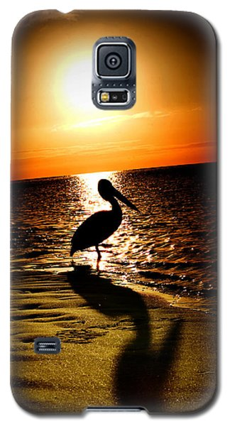 Galaxy S5 Case featuring the photograph Pelican Sunrise by Yew Kwang