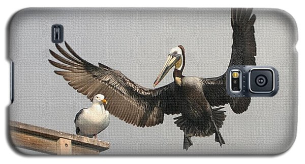Galaxy S5 Case featuring the photograph Pelican Wins Sea Gull Looses by Tom Janca