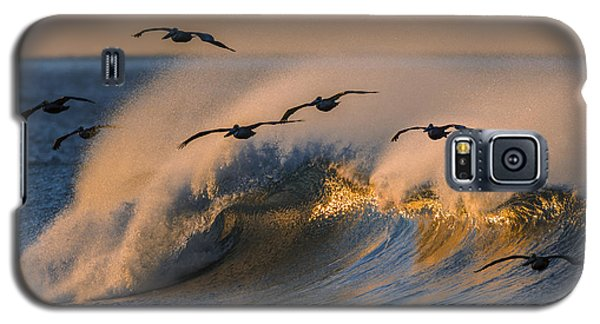 Pelicans And Wave 73a2308-2 Galaxy S5 Case