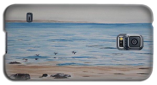 Pelicans At El Capitan Galaxy S5 Case