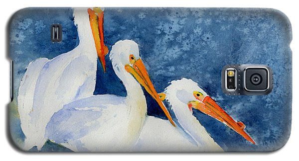 Pelicans At The Weir Galaxy S5 Case by Pat Katz