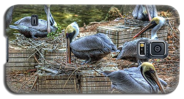 Galaxy S5 Case featuring the photograph Pelicans By The Dock by Donald Williams