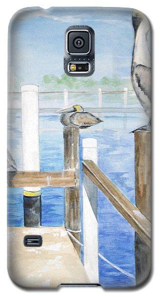 Galaxy S5 Case featuring the painting Pelicans by Ellen Canfield