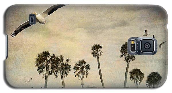 Pelicans In Flight Galaxy S5 Case