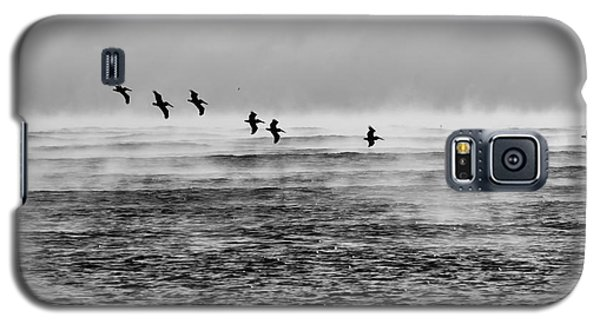 Pelicans In The Mist Galaxy S5 Case by Lynda Dawson-Youngclaus