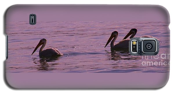 Galaxy S5 Case featuring the photograph Pelicans by Marianne NANA Betts