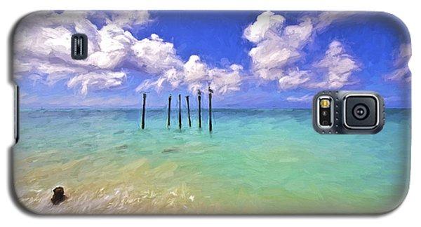 Pelicans Of Aruba Galaxy S5 Case