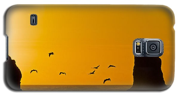 Pelicans On The Wing II Galaxy S5 Case