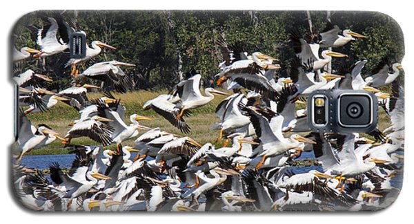 Pelicans Take Flight Galaxy S5 Case
