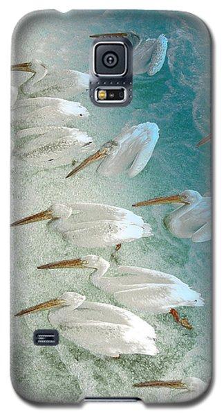 Pellican Frenzy Galaxy S5 Case by Stuart Turnbull