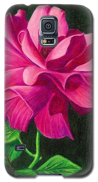 Pencil Rose Galaxy S5 Case