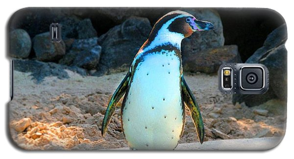 Galaxy S5 Case featuring the photograph Penguin by Kristine Merc