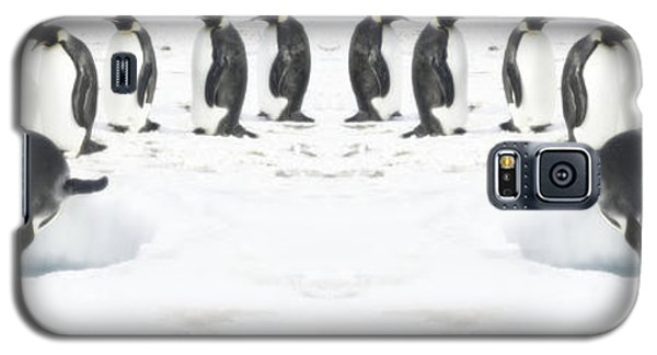 Galaxy S5 Case featuring the photograph Penguin Lunch Time by R Muirhead Art