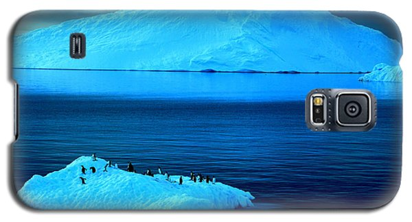 Penguins On Iceberg Galaxy S5 Case by Amanda Stadther