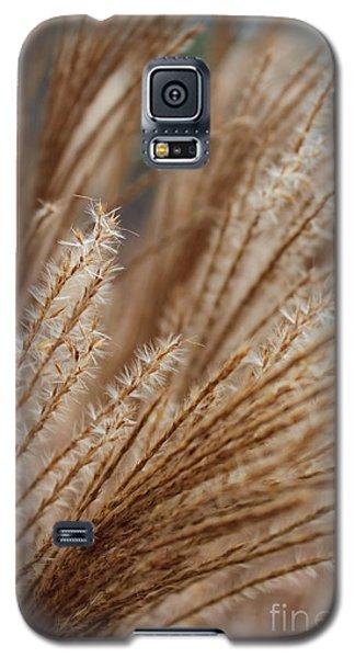 Pennisetum Galaxy S5 Case
