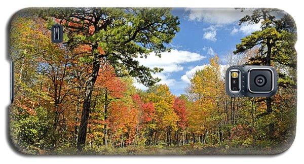 Pennsylvania Forest In Autumn Pocono Mountains Galaxy S5 Case