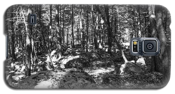 Pennsylvania Forests Lan 347 Galaxy S5 Case by G L Sarti