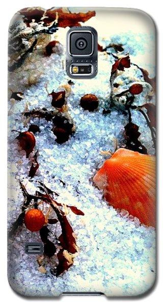 Pensacola Beach Sand Galaxy S5 Case