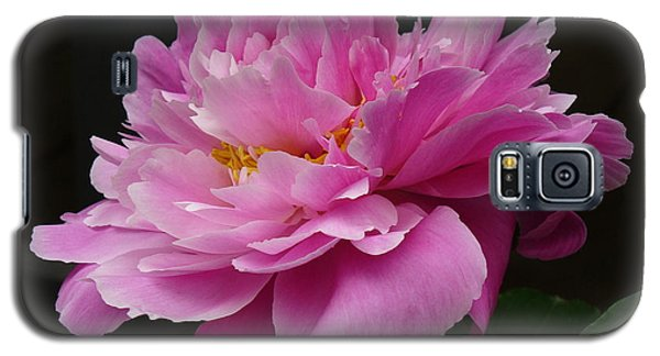 Galaxy S5 Case featuring the photograph Peony Blossoms by Lingfai Leung
