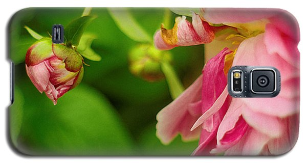 Galaxy S5 Case featuring the photograph Peony Flower With Bud by Suzanne Powers